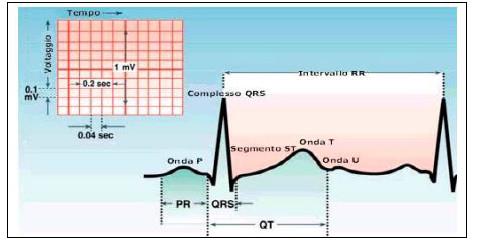 HRV (Heart Rate Variability) – Cosa fare per iniziare ad utilizzare questo parametro?